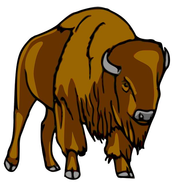 bison-23160_640